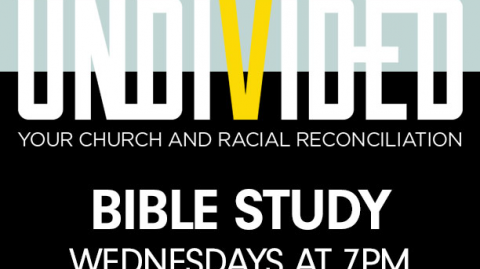 Bible Study Resources: Undivided
